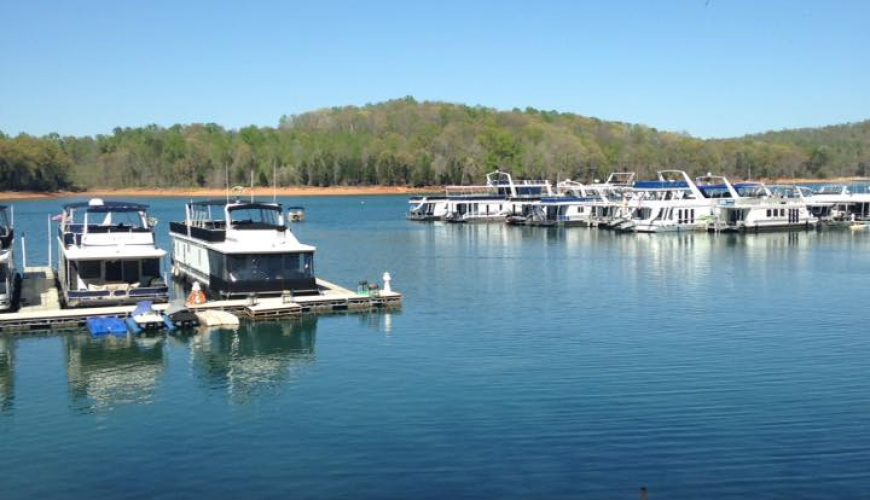 Stardust marina norris lake for Norris lake fishing