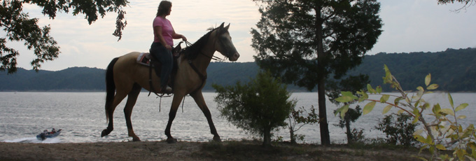 norris lake horseback riding